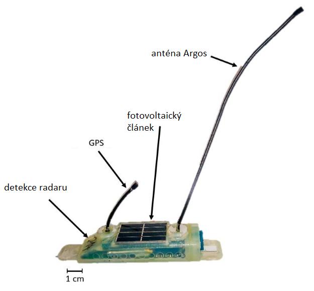 Sledovací zařízení pro albatrosy, upraveno podle PNAS, doi: 10.1073/pnas.1915499117.