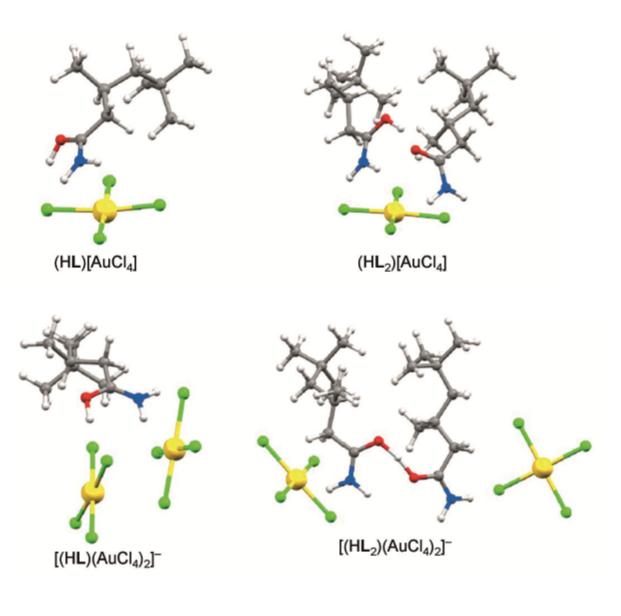 Struktury komplexů tetrachlorozlatitého aniontu s amidem (E.D.Doidge et al., A Simple Primary Amide for the Selective Recovery of Gold from Secondary Resources, 2016, Angew. Chem. Int. Ed.. doi:10.1002/anie.201606113).