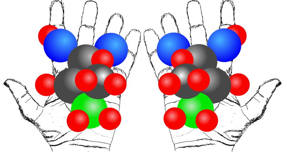 Typický příklad chirální molekuly představuje aminokyselina alanin CH3CH(NH2)COOH, jejíž dvě možné struktury vidíme na obrázku. Šedivé koule značí atomy uhlíku, modré kyslíku, zelené dusíku a červené vodíku.