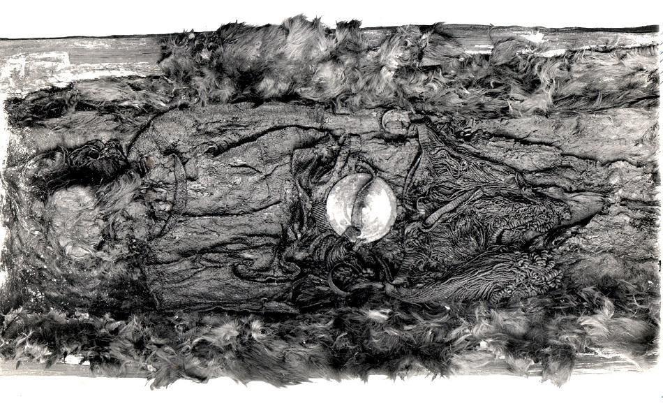 Otevřená dřevěná rakev s pozůstatky egtvedské dívky. Dochovaly se pouze vlasy, mozek, zuby, nehty a části kůže, foto The British National Museum [Public domain].