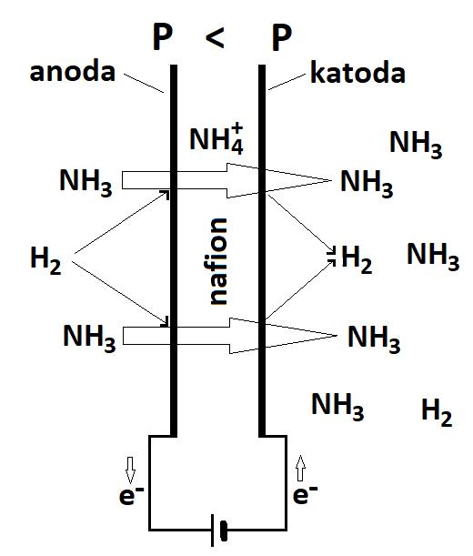 Reakční schéma elektrochemického stlačování amoniaku.