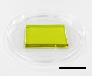 Polyakrylamidový gel, který zároveň chladí i vyrábí elektřinu, černá úsečka je 2 cm dlouhá, adapted from Nano Letters 2020, DOI: 10.1021/acs.nanolett.0c00800https://www.eurekalert.org/multimedia/pub/229500.php.