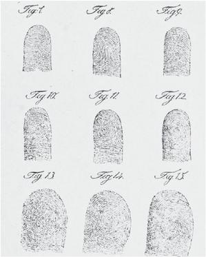 Devet typů otisků prstů, které identifikoval Jan Evangelista Purkyně, public domain via Wikimedia Commons.