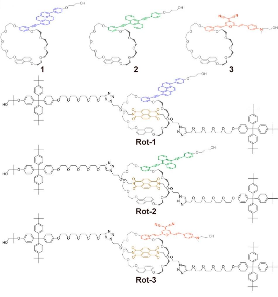 Struktura fluorescenčních rotaxanů pod označení 1, 2 a 3. Jejich barvy naznačují barvu fluorescence (modrá, zelená, oranžová). Níže je znázorněna kompletní struktura rotaxanů navlečených na polymerní řetězce, jejichž základem byl polyuretan (Rot-1, Rot-2 a Rot-3), Sagara, Y. et al., Rotaxane-based Mechanophores Enable Polymers with Mechanically Switchable White Photoluminescence, ACS Central Science, April 24, 2019.