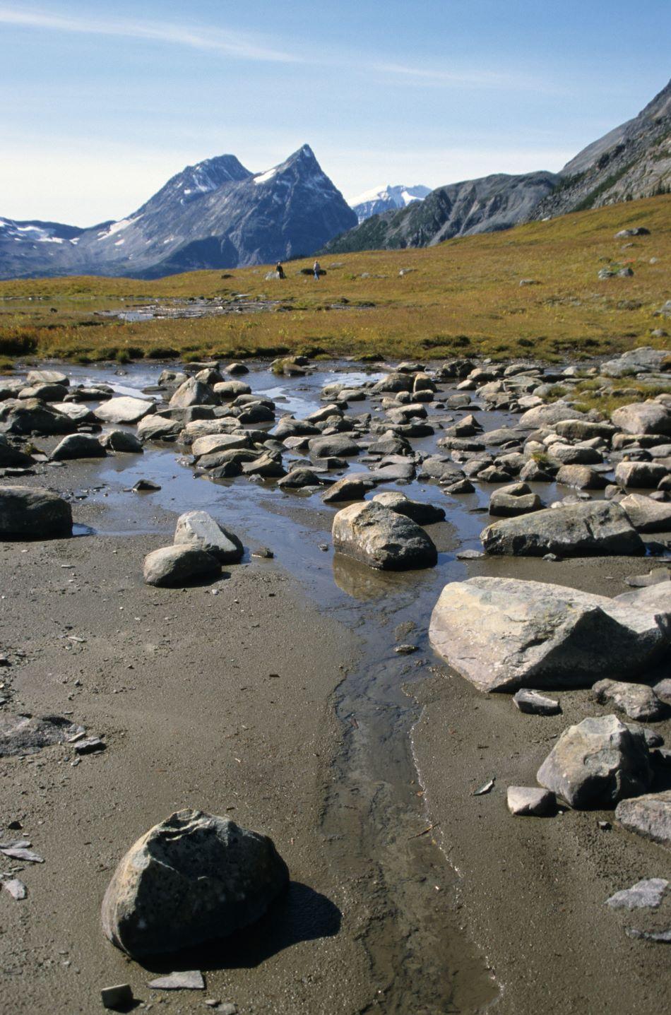 Jeden ze zdrojů řeky Fraser v průsmyku Fraser ve výšce kolem 2.000 m n.m.,  foto Roland Neave at English Wikipedia [CC BY 3.0 (https://creativecommons.org/licenses/by/3.0)].
