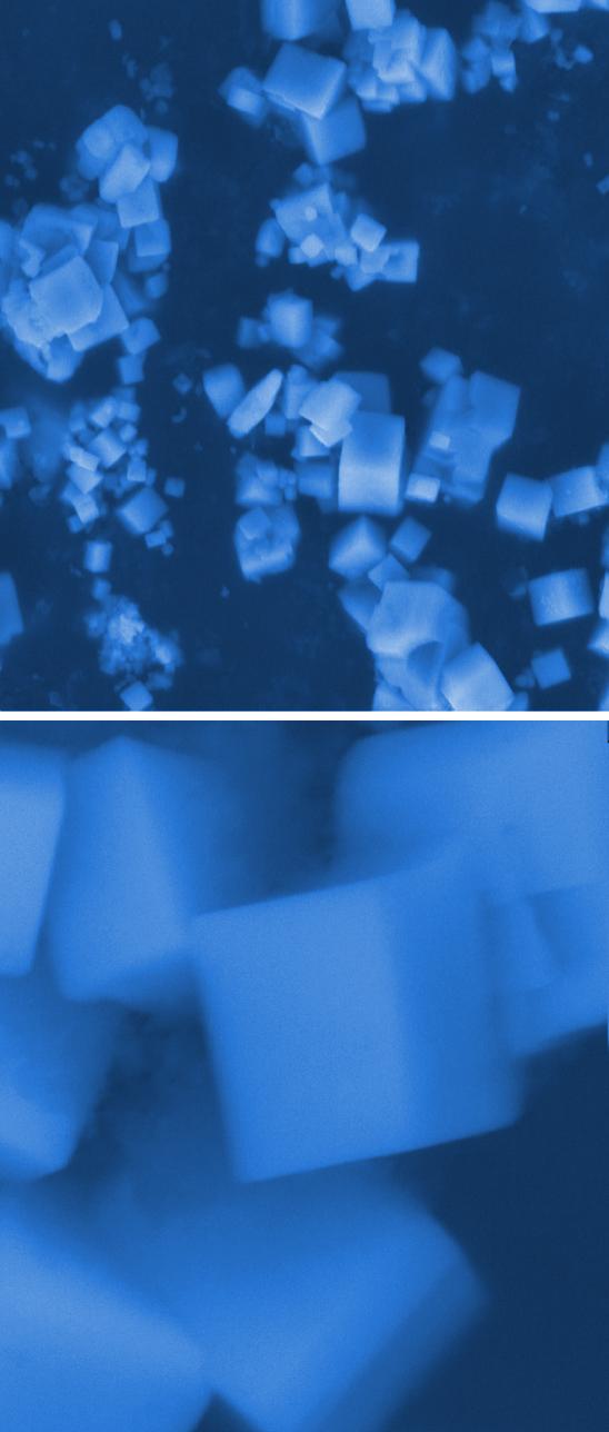 Krystaly hexaboridů v elektronovém mikroskopu, měřítko 5 mikrometrů nahoře, 500 nm dole, foto University of California, San Diego.