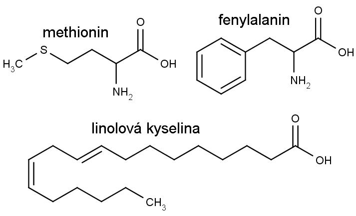 Nahoře chemická struktura aminokyselin methioninu a fenylalaninu, dole kyseliny linolové.