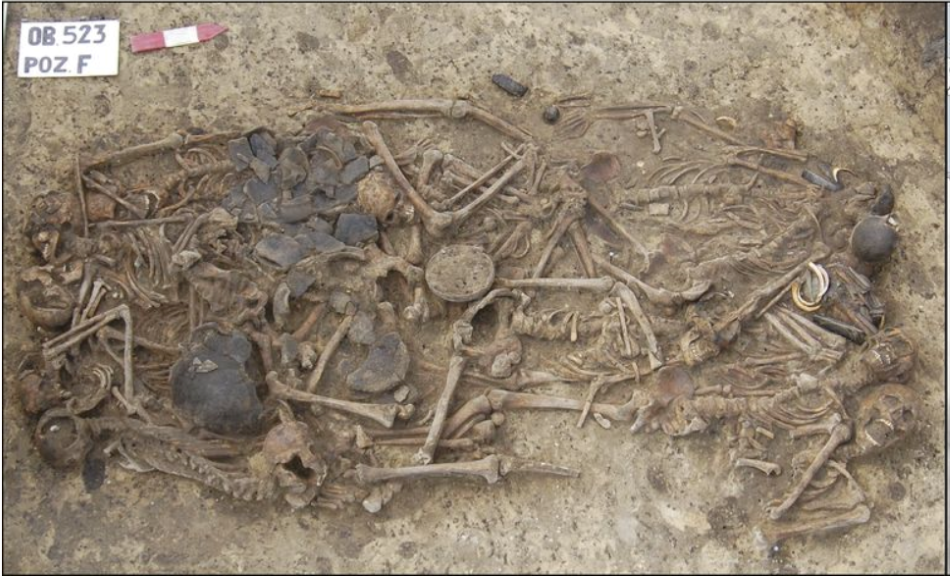 Snímek odkrytého masového hrobu v Koszycích, foto H.Schroeder et al., Unraveling ancestry, kinship, and violence in a Late Neolithic mass grave, PNAS May 28, 2019 116 (22) 10705-10710, CC BY-NC-ND 4.0, https://creativecommons.org/licenses/by-nc-nd/4.0/.