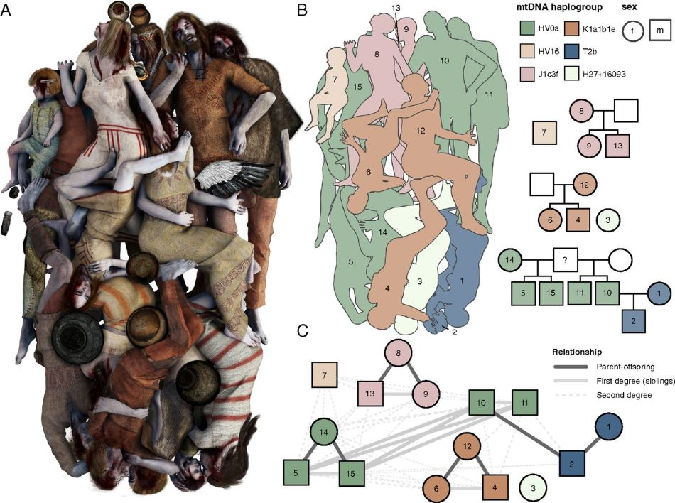 Hypotetická vizualizace odkrytého hrobu s  rodokmenem, obr. H.Schroeder et al., Unraveling ancestry, kinship, and violence in a Late Neolithic mass grave, PNAS May 28, 2019 116 (22) 10705-10710, CC BY-NC-ND 4.0, https://creativecommons.org/licenses/by-nc-nd/4.0/.