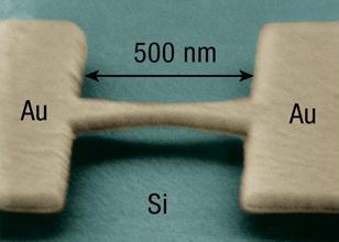 dvojice zlatých elektrodých spojených můstkem před přerušením a vložením molekuly (foto  Joshua Parks, Cornell University)