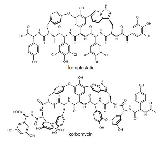 Chemická struktura glykopeptidů korbomycinu a komplestatinu.