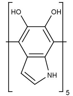 Chemicská struktura melaninu, vlasového a kožního barviva.