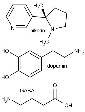 Zeshora dolů chemická struktura nikotinu, dopaminu a gama-aminomáselné kyseliny.