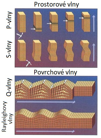 Čtyři typy seismických vln (upraveno podle https://earthquake.usgs.gov/, Public domain, via Wikimedia Commons.