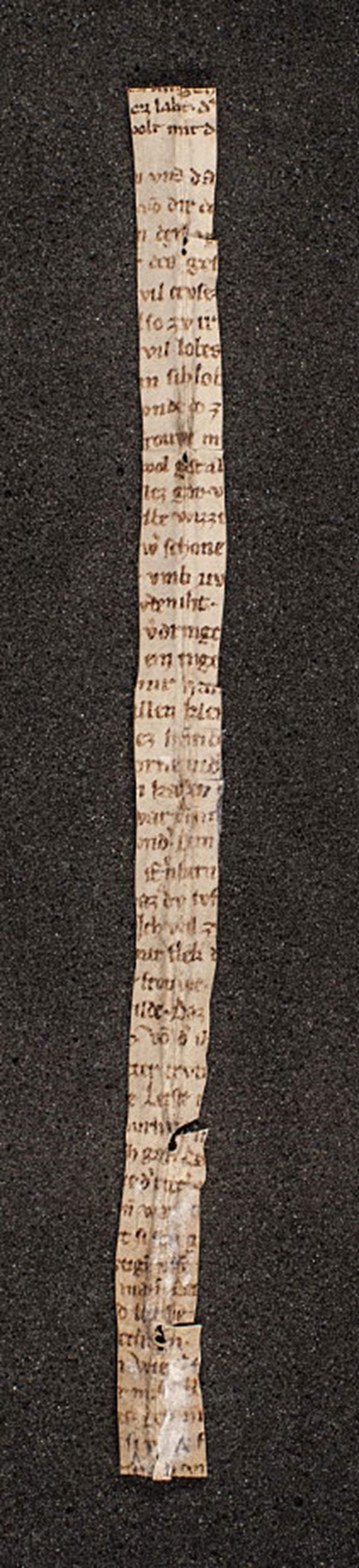 Proužek pergmanenu s fragmenty básně Der Rosendorn nedávno nalezený v knihovně kláštera v rakouském Melku, Unknown 14th-century scribe/poet. [Public domain].