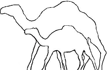Porovnání velikosti součásného a pravěkého arktického velblouda.